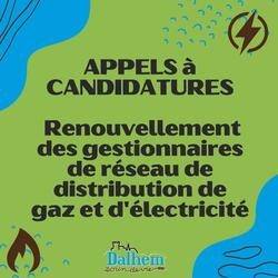 Appels à candidatures - Renouvellement des gestionnaires de réseau de distribution gaz et électricité